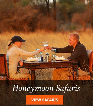 Africa Honeymoon safaris