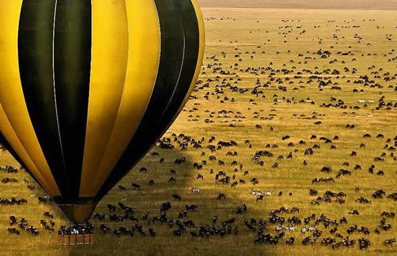 serengeti-mara-migration-safari