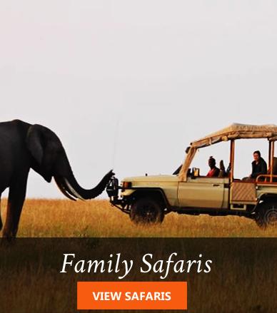 kenya family safaris