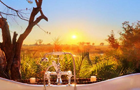 Botswana Honeymoon safari package