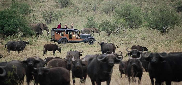 cottars camp masai mara