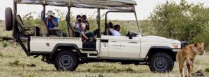 Open-side Safari Vehicles