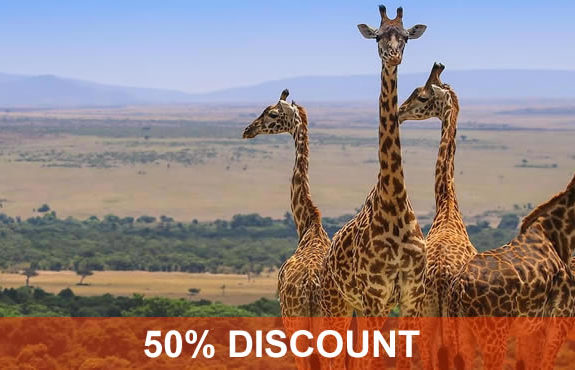 Safaris Tours and Trips to Kenya (Authentic Tour Operator)