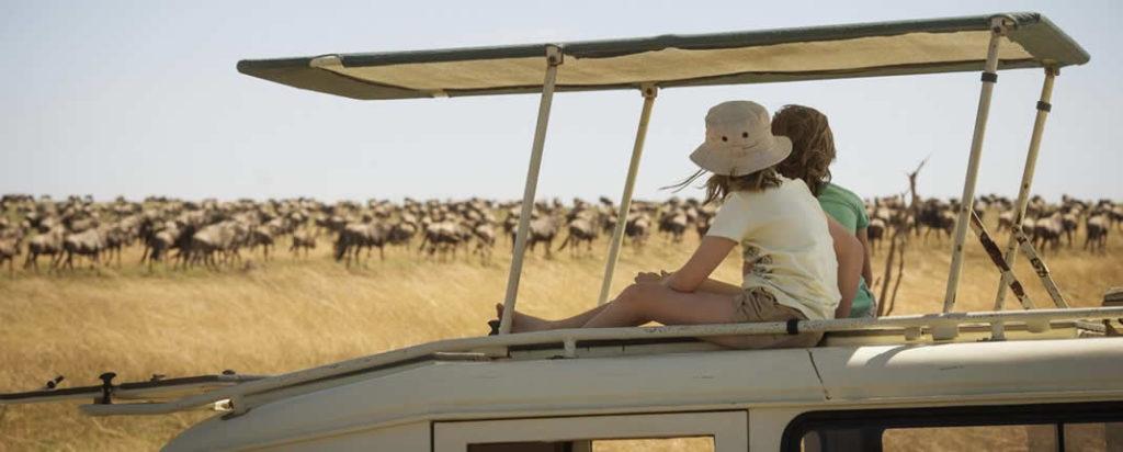 Blogs - Articles - Travel Tips - Safari Advice